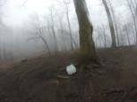 1st Trail Magic