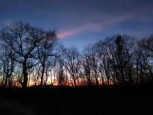Siler Bald Sunset through the trees