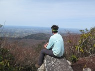PoBoy: Pondering or Perplexed?
