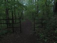 Trail shot 5/18