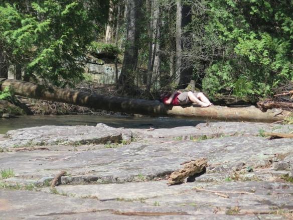 PoBoy taking a nap at Dismal Falls