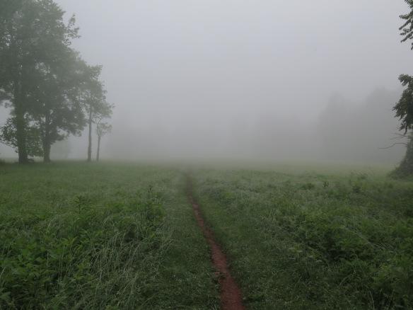 Sky Meadow State Park