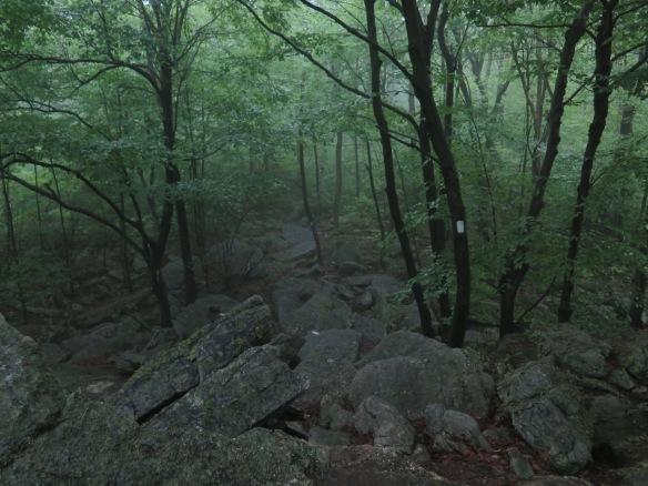 Rocky terrain 6/19