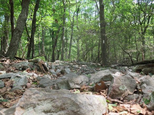 More PA Rocks