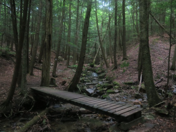 7/9 Trail
